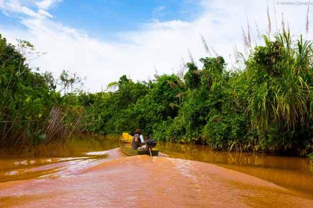 Wellington guides his boat through a narrow channel of the contaminated Doce River near the community of Regencia. Listen to his story and the challenges facing those who rely on traditional livelihoods.