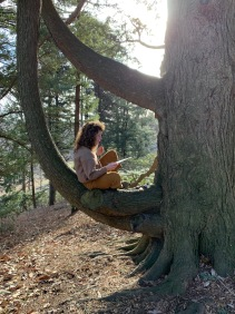 This is a picture of a student sitting in a tree.